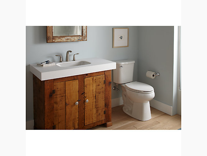 Windham Comfort Height Elongated All-In-One Toilet With ProForce ...