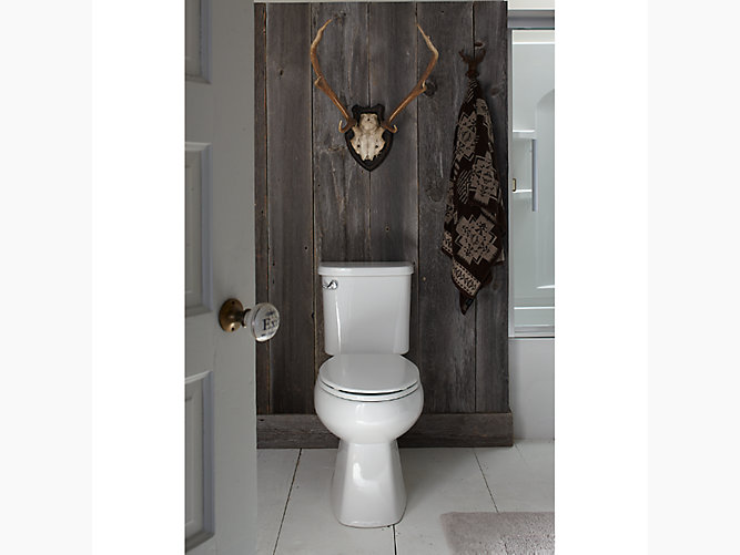 Windham Comfort Height 174 Ada Elongated Toilet With Pro