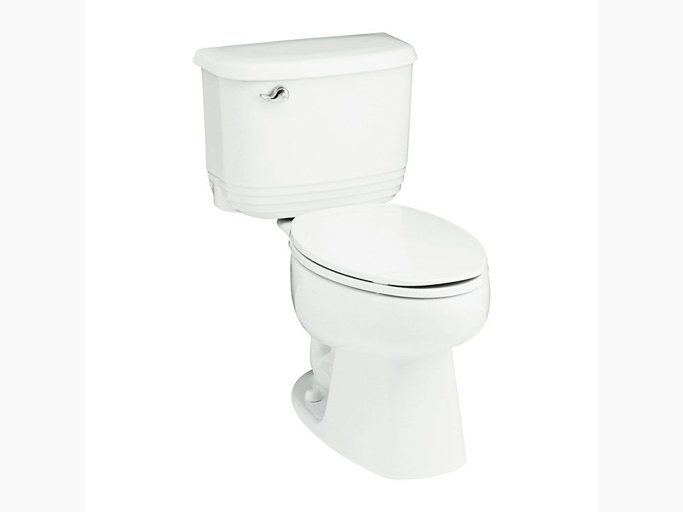 Riverton 10 Quot Rough In Elongated Toilet With Insulating