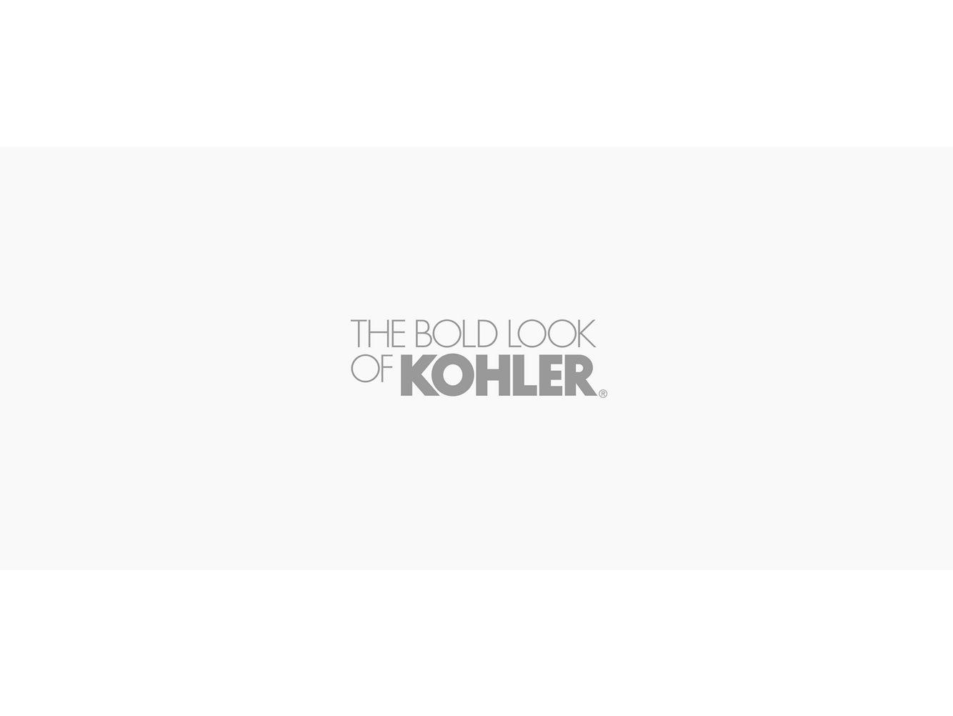 Kohler 6228 C11 Karbon Articulating Two Hole Wall Mount Kitchen