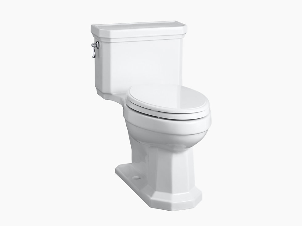 Kathryn One-piece 4.8L Toilet with Class 5 Flushing Technology