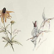 Prairie Flowers™