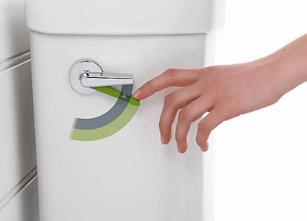 馬桶沖水選項