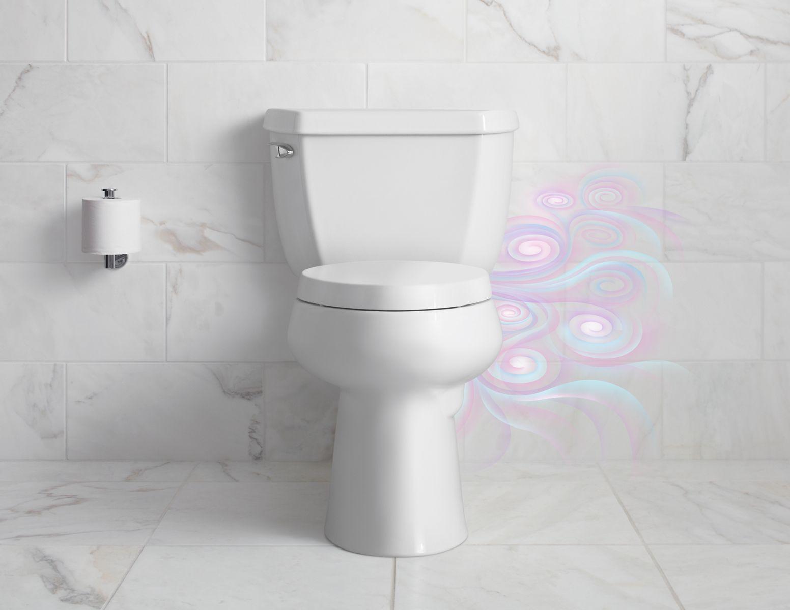 Toilet Seat 101