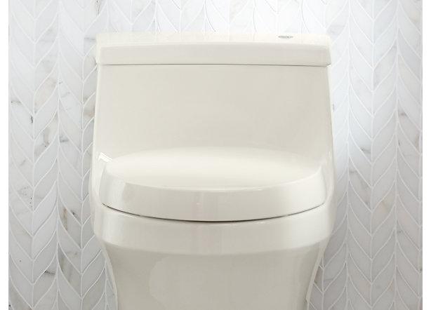 Magnificent Toilet Seats Guide Bathroom Kohler Ncnpc Chair Design For Home Ncnpcorg